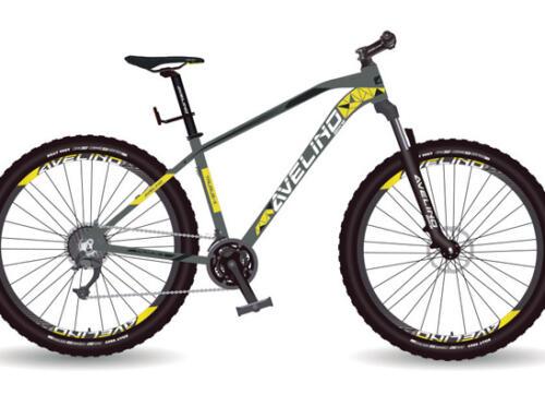 Avelino Bike presentó su línea de bicicletas 2021